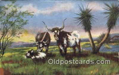 xrt184069 - No. 21 Artist L.H. Larson Postcards Post Cards Old Vintage Antique