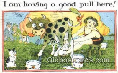 xrt333034 - Artist E.L. White Postcard Post Card, Old Vintage Antique