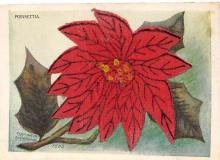 xms000023 - Christmas Post Card Old Vintage Antique Xmas Postcard