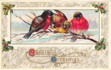 xms000779 - Christmas Post Card Old Vintage Antique Xmas Postcard