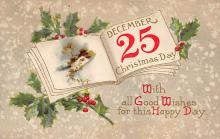 xms001529 - Christmas Post Card Old Vintage Antique Xmas Postcard