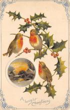 xms002203 - Christmas Postcard Antique Xmas Post Card