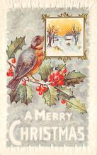 xms002253 - Christmas Postcard Antique Xmas Post Card