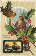 xms002559 - Christmas Post Card Antique Xmas Postcard