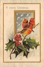 xms002623 - Christmas Post Card Antique Xmas Postcard