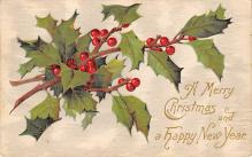 xms002941 - Christmas Day Postcard