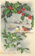 xms002955 - Christmas Day Postcard