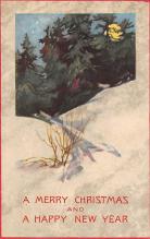 xms003001 - Christmas Day Postcard