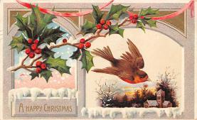 xms003053 - Christmas Post Card