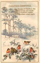 xms005111 - Christmas Postcard