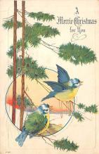 xms005129 - Christmas Postcard