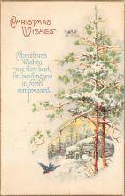 xms005279 - Christmas Postcard