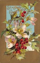 xms005297 - Christmas Postcard