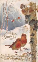xms005481 - Christmas Postcard