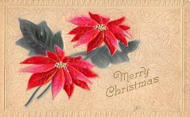 xms005503 - Christmas Postcard
