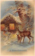 xms005627 - Christmas Post Card