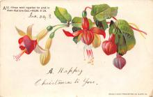xms005903 - Christmas Post Card Old Vintage Antique Xmas Postcard