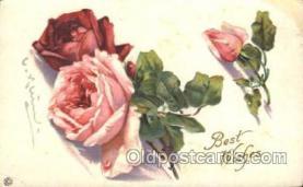 xrt035042 - Artist Signed Catherine Klein Postcard Postcards