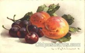 xrt035047 - Artist Signed Catherine Klein Postcard Postcards