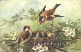 xrt035060 - Artist Signed Catherine Klein Postcard Postcards