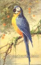 xrt035129 - Artist Signed Catherine Klein Postcard Postcards