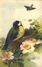 xrt035131 - Artist Signed Catherine Klein Postcard Postcards