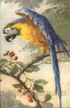 xrt035136 - Artist Signed Catherine Klein Postcard Postcards