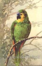 xrt035138 - Artist Signed Catherine Klein Postcard Postcards