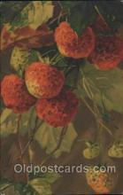 xrt035141 - Artist Signed Catherine Klein Postcard Postcards