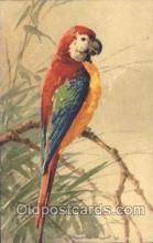 xrt035146 - Artist Signed Catherine Klein Postcard Postcards