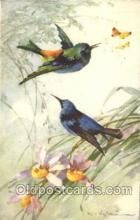 xrt035153 - Artist Signed Catherine Klein Postcard Postcards