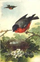 xrt035157 - Artist Signed Catherine Klein Postcard Postcards