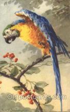 xrt035178 - Artist Signed Catherine Klein Postcard Postcards