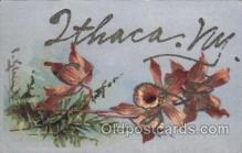 xrt035181 - Ithaca, NY USA, Artist Signed Catherine Klein Postcard Postcards