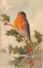 xrt035262 - Artist Signed Catherine Klein Old Vintage Post Cards