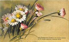 xrt035341 - Artist Catherine Klein Postcard Old Vintage Antique Post Card