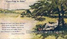 xrt071235 - Artist Shinn, Cobb Postcard Post Card, Old Vintage Antique