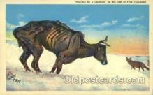 xrt260011 - Artist Charles Russell, Postcard Post Card