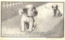 xrt296015 - Artist F. Bluh, F & W Postcard Post Card Old Vintage Antique