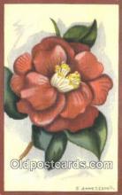 xrt503047 - Artist Anne T. Cargill Postcard Post Card Old Vintage Antique