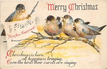 xrt597385 - Holiday Postcards