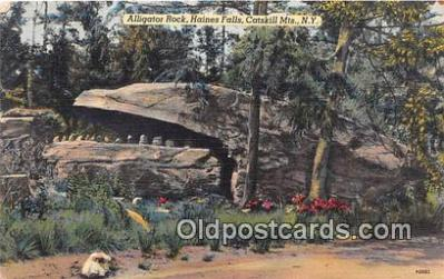 yan000022 - Haines Fall, Catskill Mts, NY, USA Alligator Rock Postcard Post Card