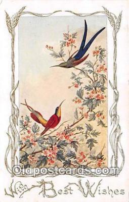 yan010087 - Humming Bird Postcard Post Card
