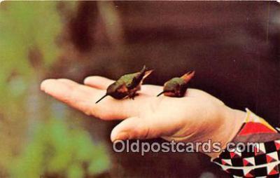 yan010197 - Crescent City, CA, USA Village Camper Inn Postcard Post Card