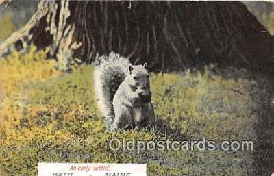 yan020002 - Postcard Post Card