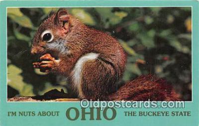 yan020026 - Ohio, USA  Postcard Post Card