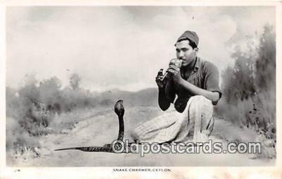 yan040001 - Ceylon Snake Charmer Postcard Post Card