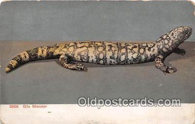 yan040012 - Gila Monster Postcard Post Card