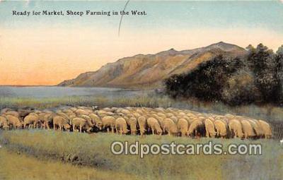 yan050015 - West Sheeping Farming Postcard Post Card