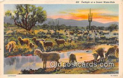 yan050030 - Desert Water Hole Postcard Post Card